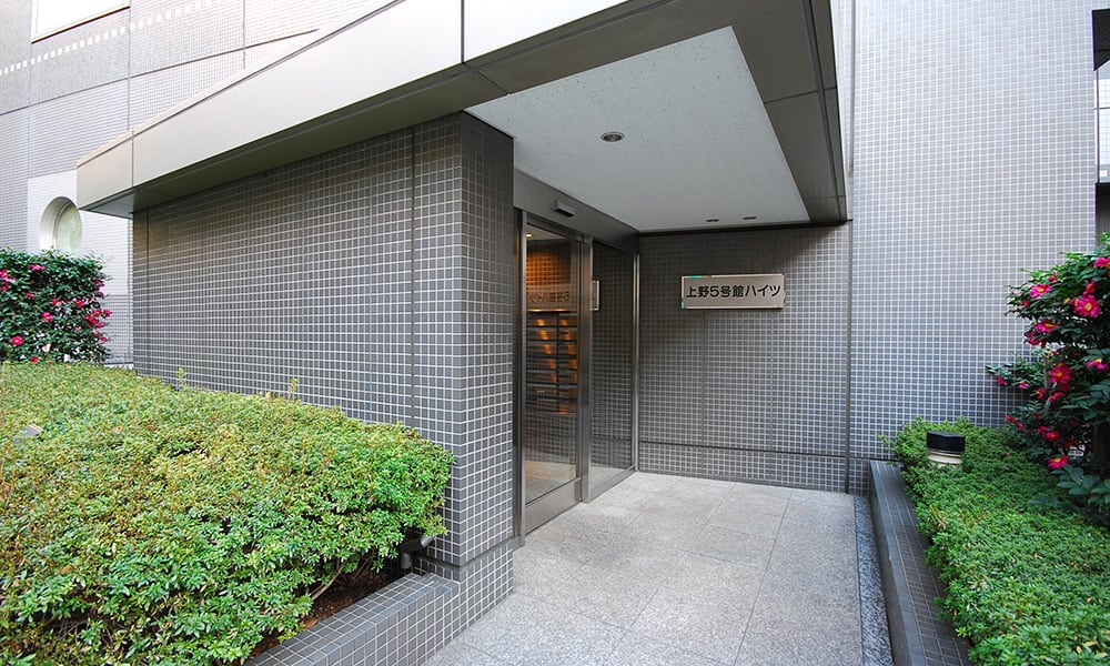 上野5号館ハイツの写真 その1